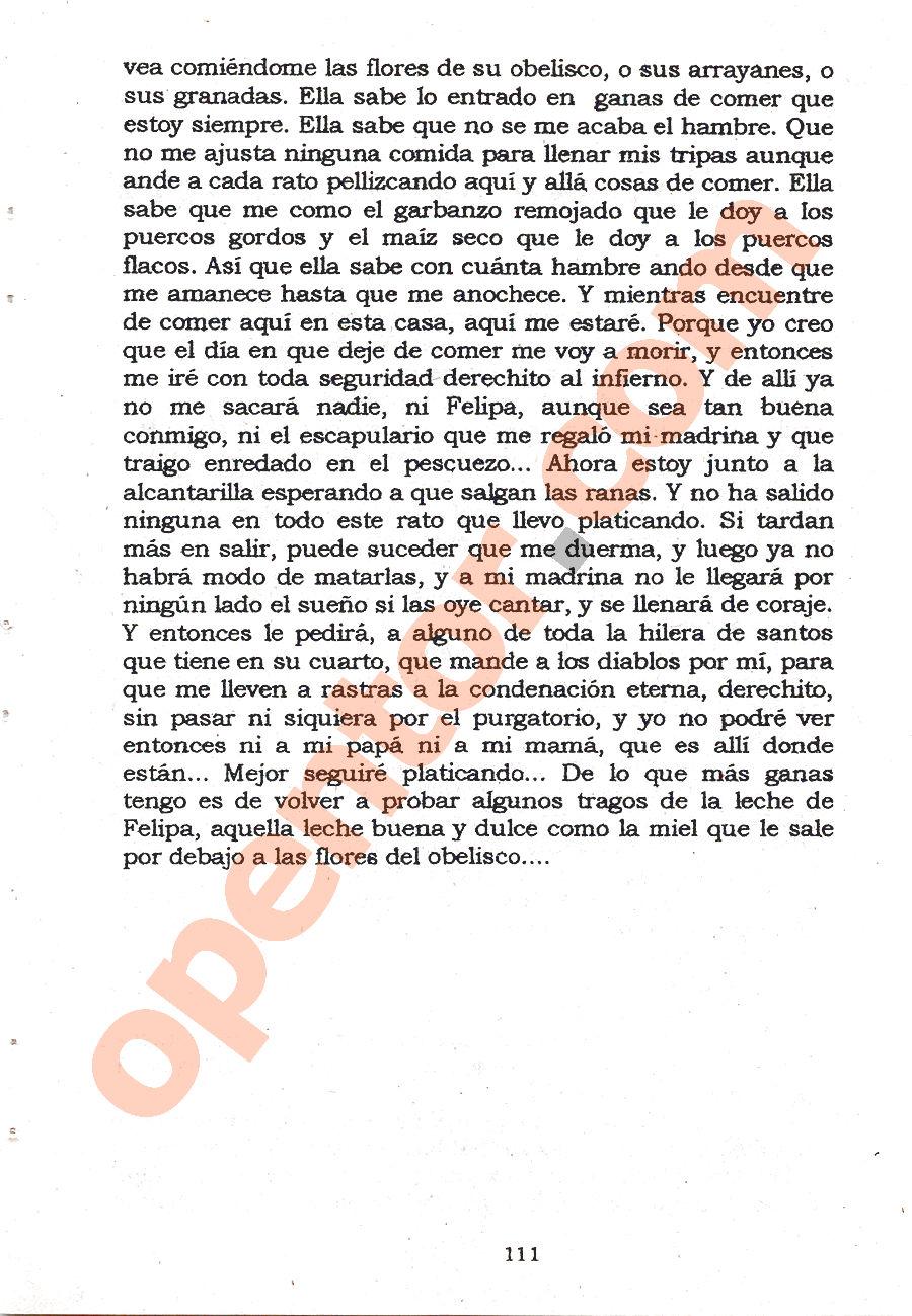 El llano en llamas - Página 111