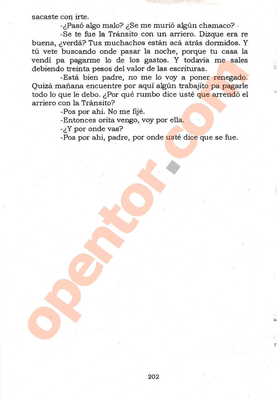 El llano en llamas - Página 202